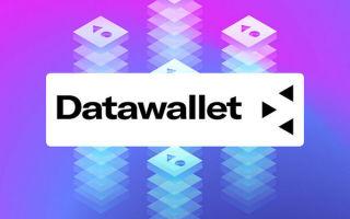 Инвестиционный анализ ICO: DataWallet